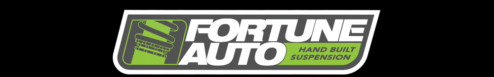 Buy Fortune Auto Parts at STM