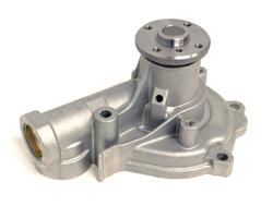 DSM Water Pump