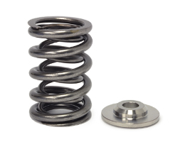 Shop for Evolution Ten Valve Springs and Retainers